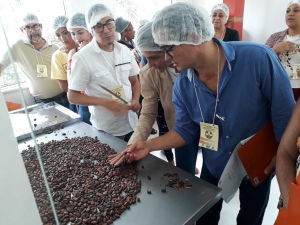Em Gandu, agricultores aprendem a beneficiar o cacau na Fábrica-Escola de Chocolate em Gandu