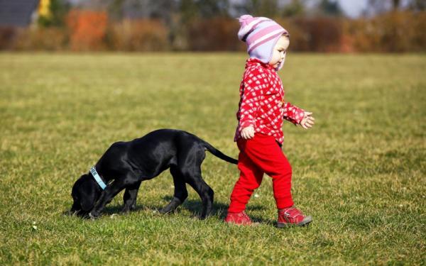 O convívio com pets e seus benefícios para as crianças