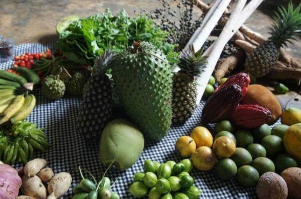 Itacaré vai sediar o 1º Encontro da Juventude Rural do Litoral Sul.