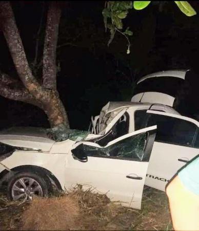 Wenceslau Guimarães: Carro bate em árvore e motorista fica ferido na BR-101