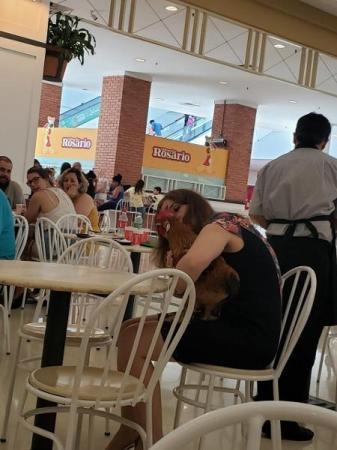 Mulher chama atenção ao levar galo para passear em shopping