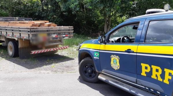 PRF apreende 3 m³ de madeira nativa sem licença ambiental na BR 101 em Gandu (BA)