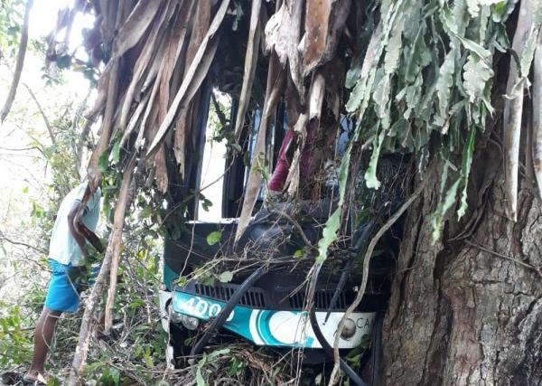 Ônibus bate em árvore em Laje e deixa 15 feridos