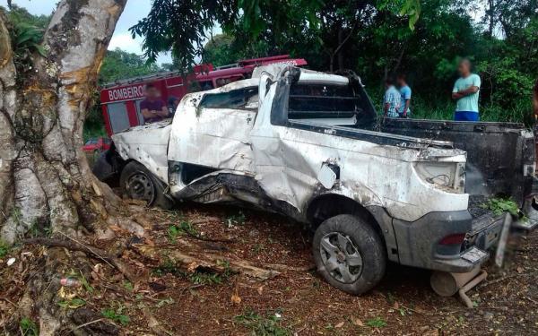 Carro bate em árvore, motorista morre e passageiro fica em estado grave.