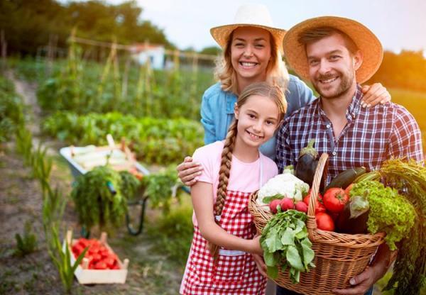 Agricultura familiar é responsável por 80% da produção mundial de alimentos