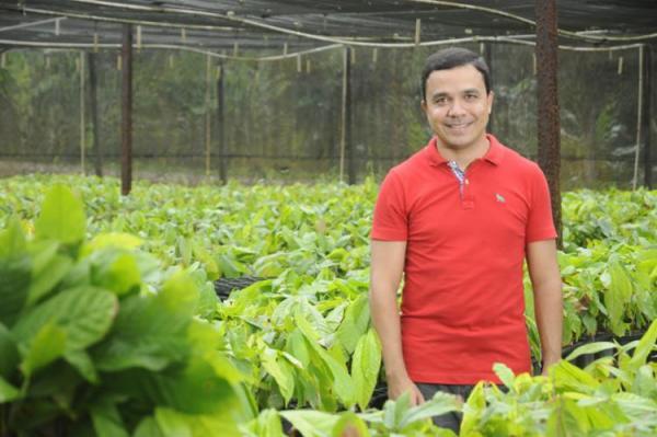 Empresa produz clones de cacaueiros de alta produtividade e resistentes a doenças